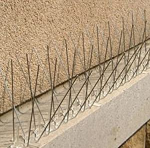 Amazon Com Planted Perfect Stainless Steel Bird Spikes