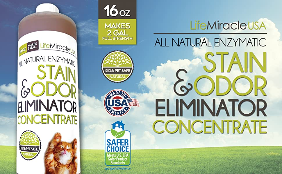 enzymes cleaner stain and odor eliminator concentrate pet dog cat animal carpet cleaner