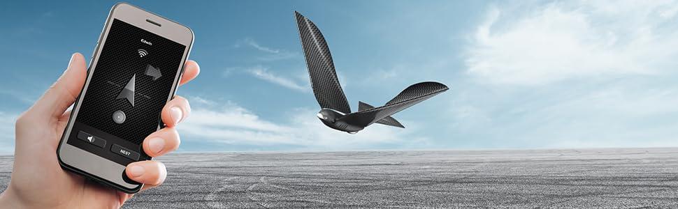 drone, smartphone, app, bird, bionicbird, robot, flying