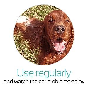 Amazon.com: rubold Premium Natural – Perro y Gato Ear ...