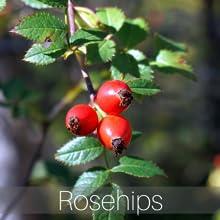 stone away tea rosehips