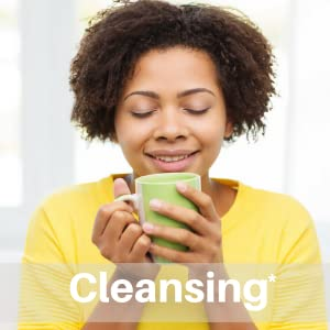 SpeedyVite Blood Cleansing Tea organic Cleanse