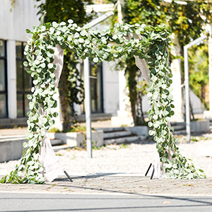 eucalyptus wedding arch