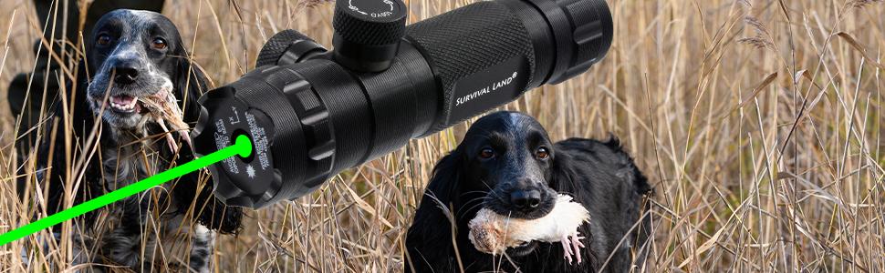 laser pointer gun sight scope rifle pistol glock ar-15 ar15 green hunting shooting survival land