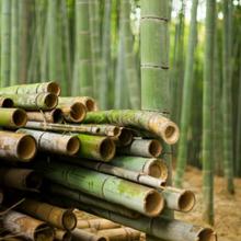 K Basix Bamboo Board