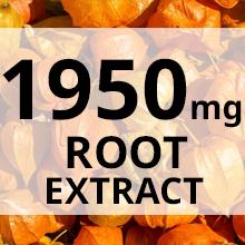 Ashwagandha maximum strength root extract powder in organic ashwagandha capsules with black pepper