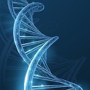 methylation, 5 mthf DNA, methylfolate, methyl folate