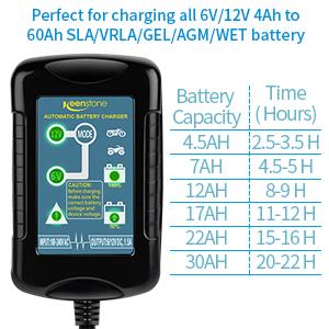 Amazon.com: Keenstone - Cargador de batería para coches de 6 ...