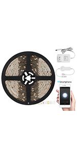 Amazon.com: TORCHSTAR LED Safe Lighting Kit, (4) 12