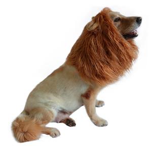 Lion Mane for Dog Costumes