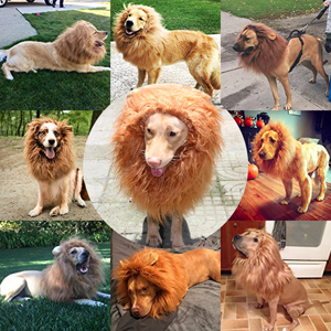 Lion Mane for Dogs