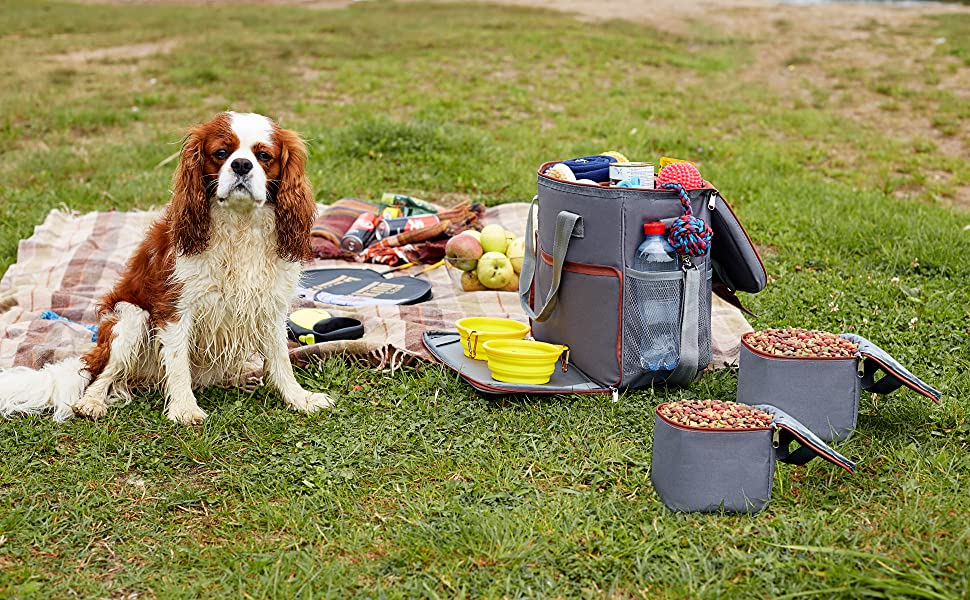Hilike Overland away Supplies paw print puppy dog travel bag pet organiser Luggage accesories