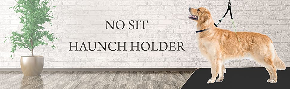 no sit haunch holder