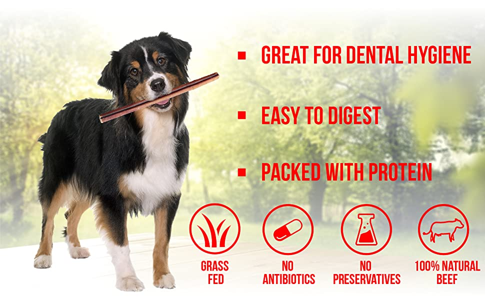 great dental hygiene easy to digest packed with protein
