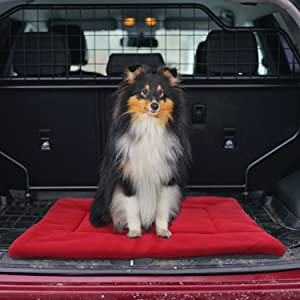 dog mat crate nap pad car
