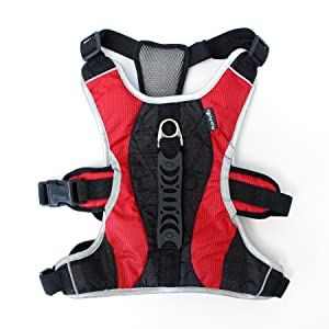 Dog Walking Lifting Carry Harness, Support Mesh Padded Vest, Accessory, Collar, Lightweight