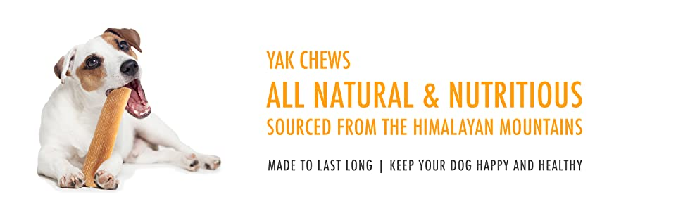 yak chews all natural and nutritious himalayan mountains last long