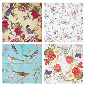 Wrapables A71263c Floral 2 Ply 40 Count Paper Napkins One Size Birds Red