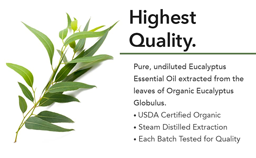 peppermint oil pure essential oils for anxiety pure eucalyptus oil