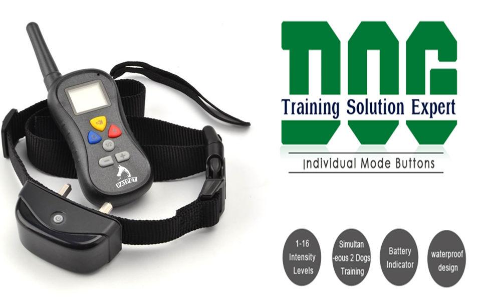 Patpet Dog Training Collar Review