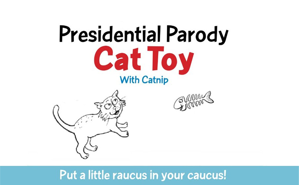 cat toy with catnip
