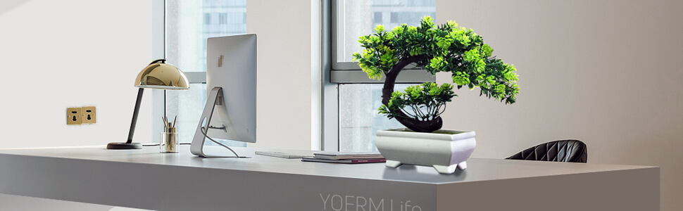 yoerm Mini Face Bonsai Tree Plastic/Resin Zen Garden Welcome
