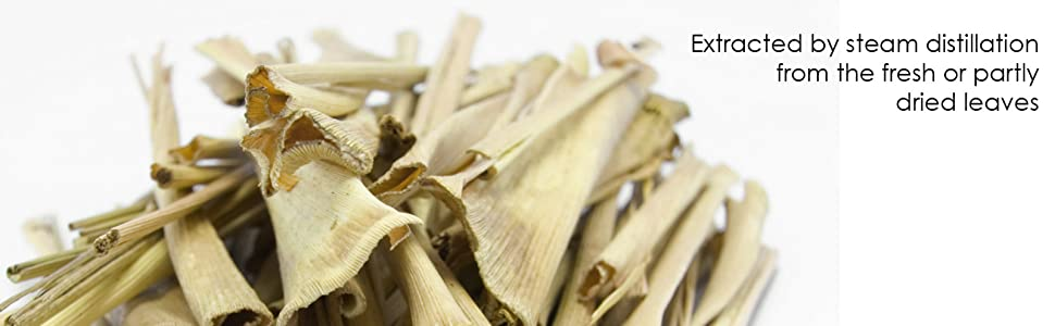Majestic pure lemongrass essential oil 100% natural therapeutic grade authentic