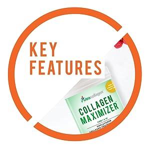 Collagen Maximizer Key Features