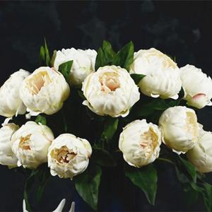 Artificial Peony Flowers