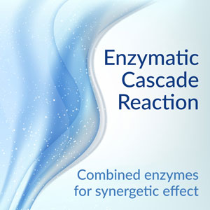 Enzymatic Cascade Reaction - Combined enzymes for synergetic effect