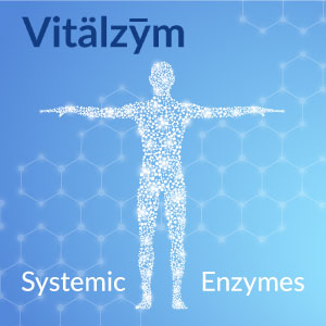Vitalzym Systemic Enzymes body with cells alive