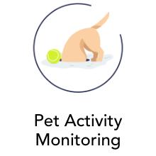 Pet Activity Monitoring