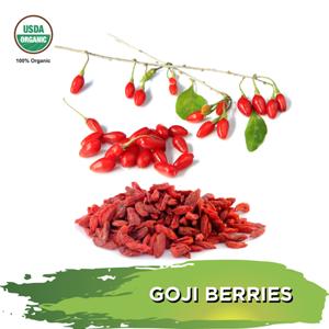 Alovitox Goji Berries | Organic Super Snack Food