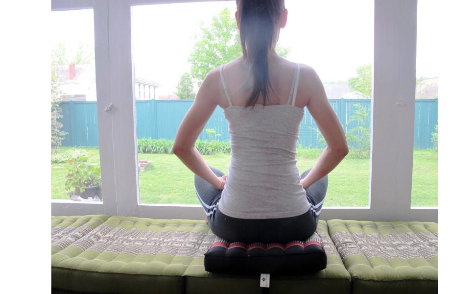 Amazon.com : Blue Orchid Zabuton Meditation Cushion, Extra ...