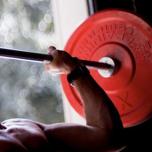 Amazon.com : x training equipment premium color bumper plate solid