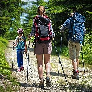 trekking poles foxelli