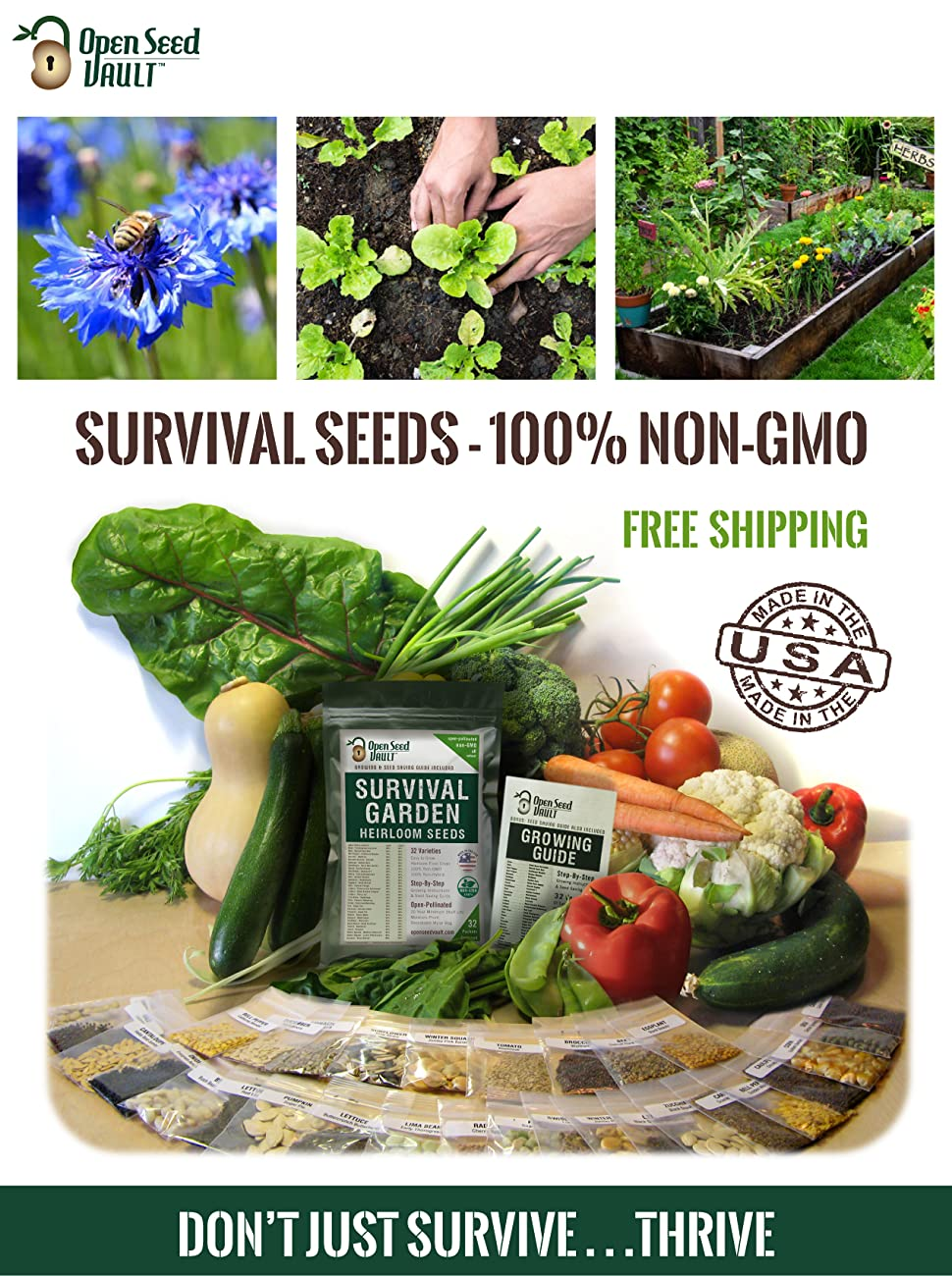 Garden Chives Variety Non-GMO Organic Herb Seeds Suited for Canadian Climate Non-Hybrid Packet 100 Seeds Open-Pollinated