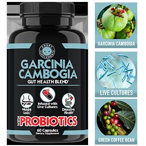 garcinia cambogia gut health probiotics