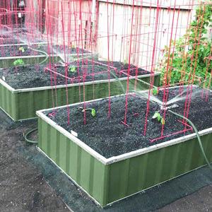 garden bed e