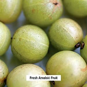 Amalaki fruit