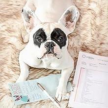 5Strands Affordable Testing, Pet, Dog, Food, Allergy, Diet, Health, Skin, Hot Spots, Nutrition