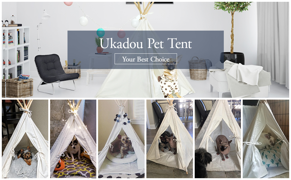 pet teepee tent dog bed