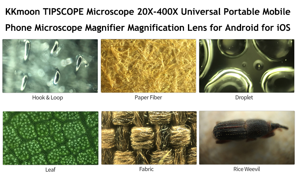 Phone Microscope
