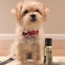 Pawfume, grooming spray, finishing spray, dog grooming, dog perfume, dog cologne, hypoallergenic