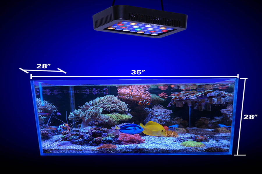 Dimmable LED Aquarium Light 140W Full Spectrum For Coral Reef Led Fish Tank Freshwater Saltwater Marine Tanks and Aquarium Decorations White u0026 Blue & Amazon.com: Dimmable LED Aquarium Light 140W Full Spectrum For ... azcodes.com