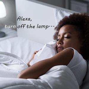 mini wifi smart plug wirless smart plug remote light plug remote control lamp appliance plug