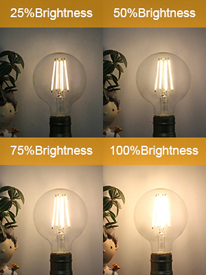 dimmable g25 led bulb