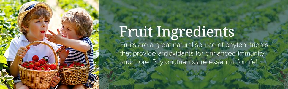 fruit ingredients