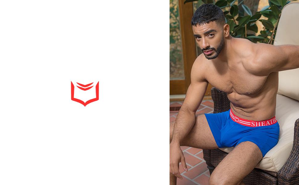 sheath underwear 4.0 mens dual pouch boxer briefs david archy saxx seperatec