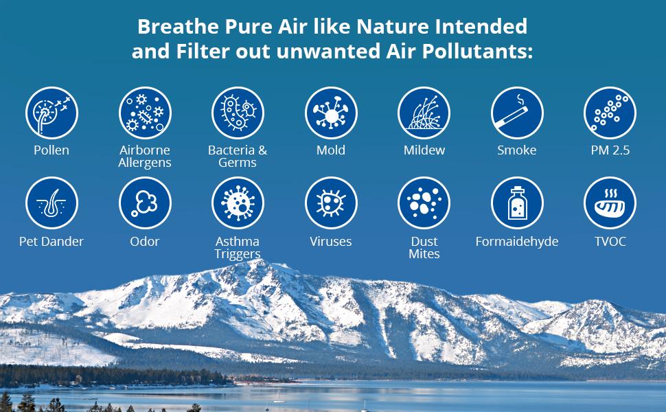 hepa air purifier for pet hair germs bacteria mildew allergens allergies smoke pollen odor mold pets